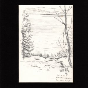 South of MacCay's Harbour_5x9-pen